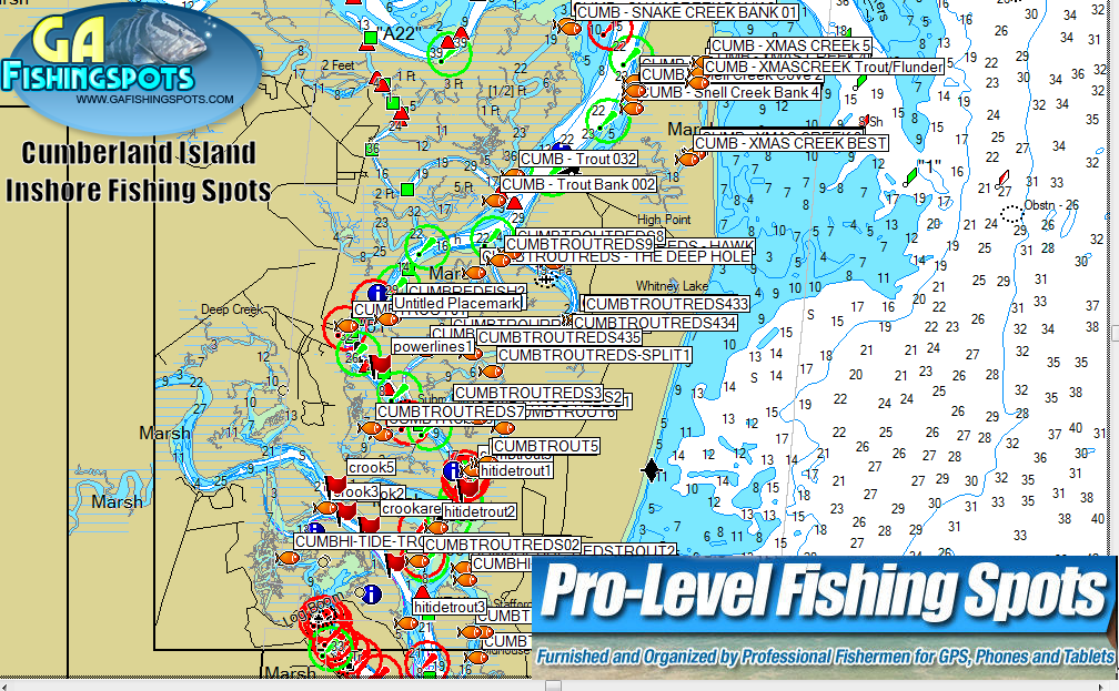 Cumberland Island Georgia Inshore Fishing Spots Map