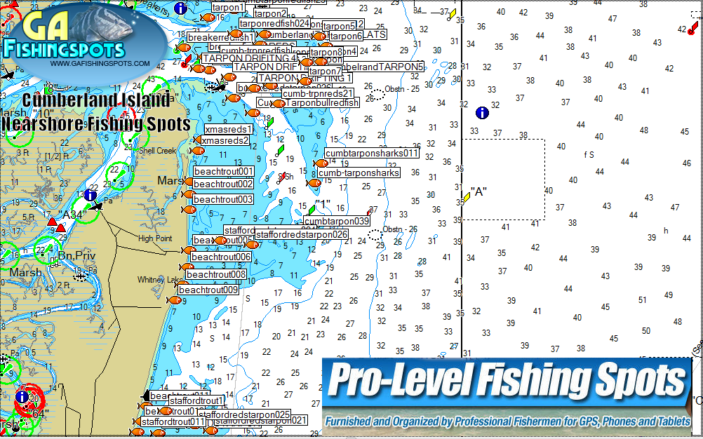 Cumeberland island fishing spots and fishing maps for Nearby fishing places