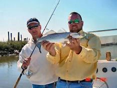 Ossabaw island fishing spots and fishing map for Georgia trout fishing map