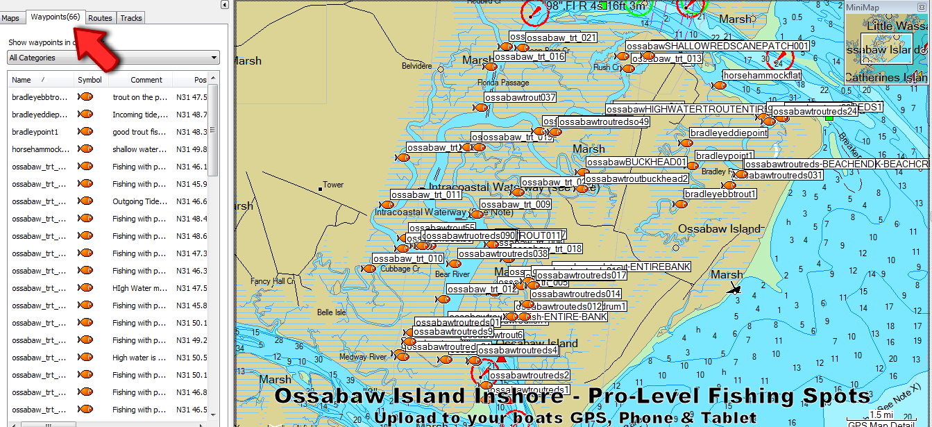 Ossabaw Island Fishing Spots and Fishing Map