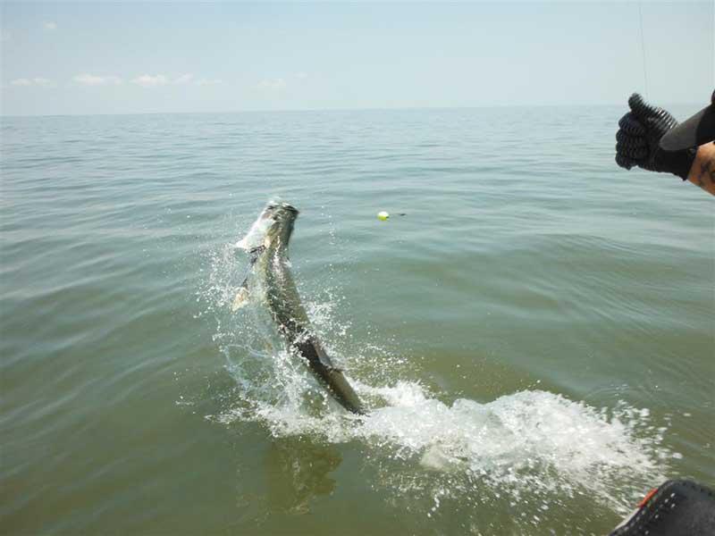 St Simons Island Fishing Spots Gps Fishing Spots At St Simons
