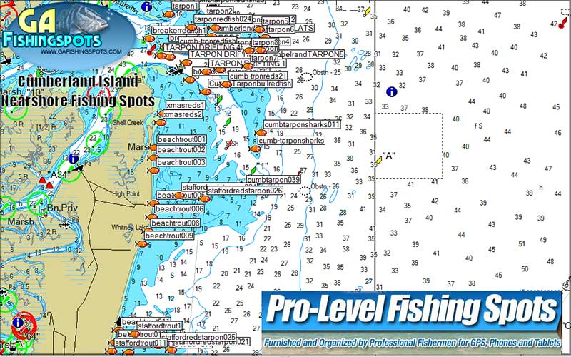 GEORGIA INSHORE /& OFFSHORE--EXCELLENT CHART TOP SPOT FISHING CHART