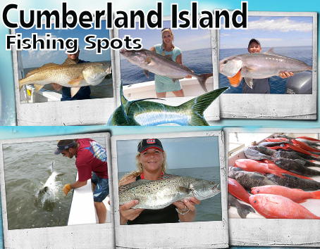 Georgia Fishing Spots For Gps Complete List Of Georgia Fishing Locations